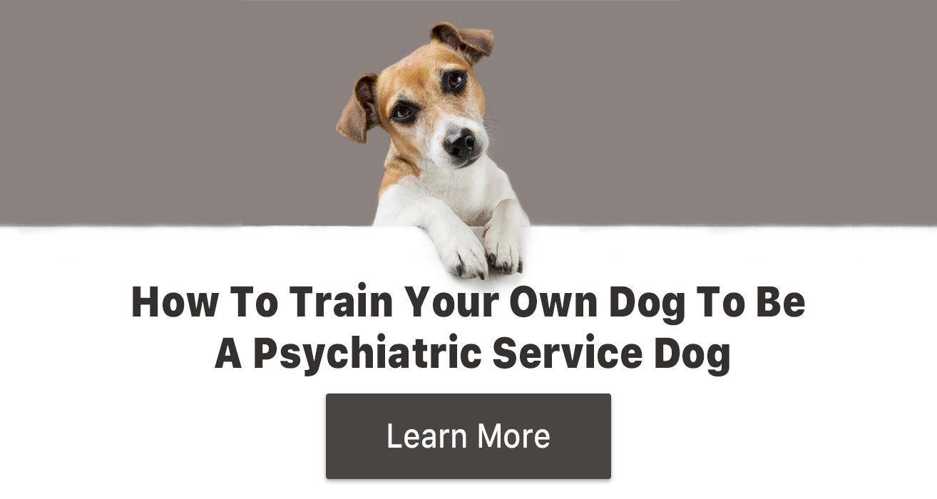 psychiatric service dog training