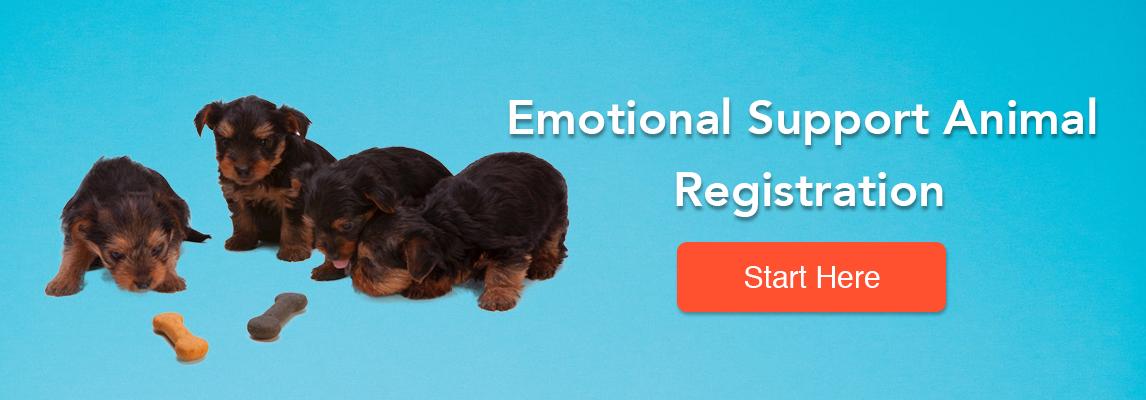 Emotional Support Animal Registration