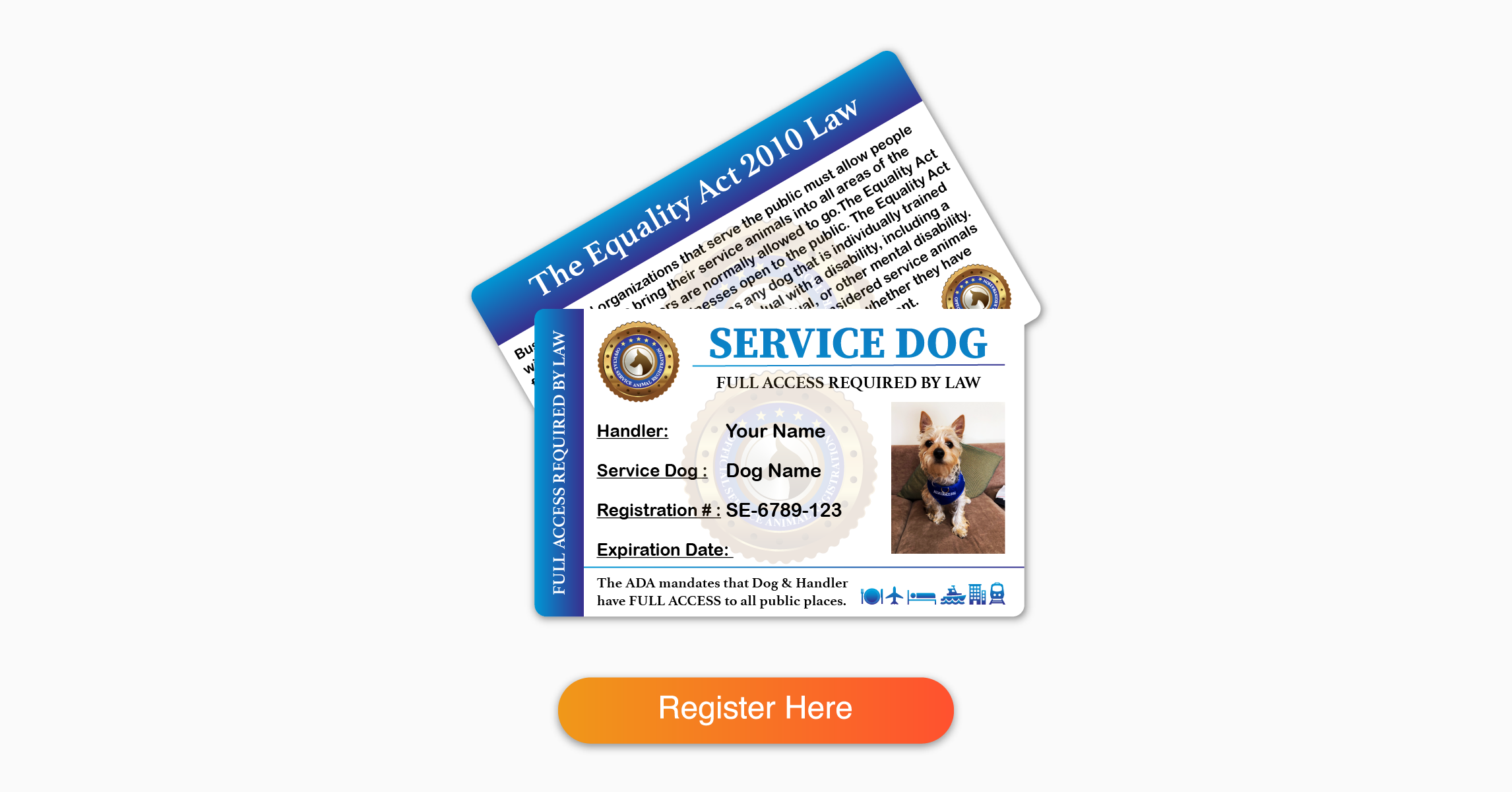 Service Dog Identification