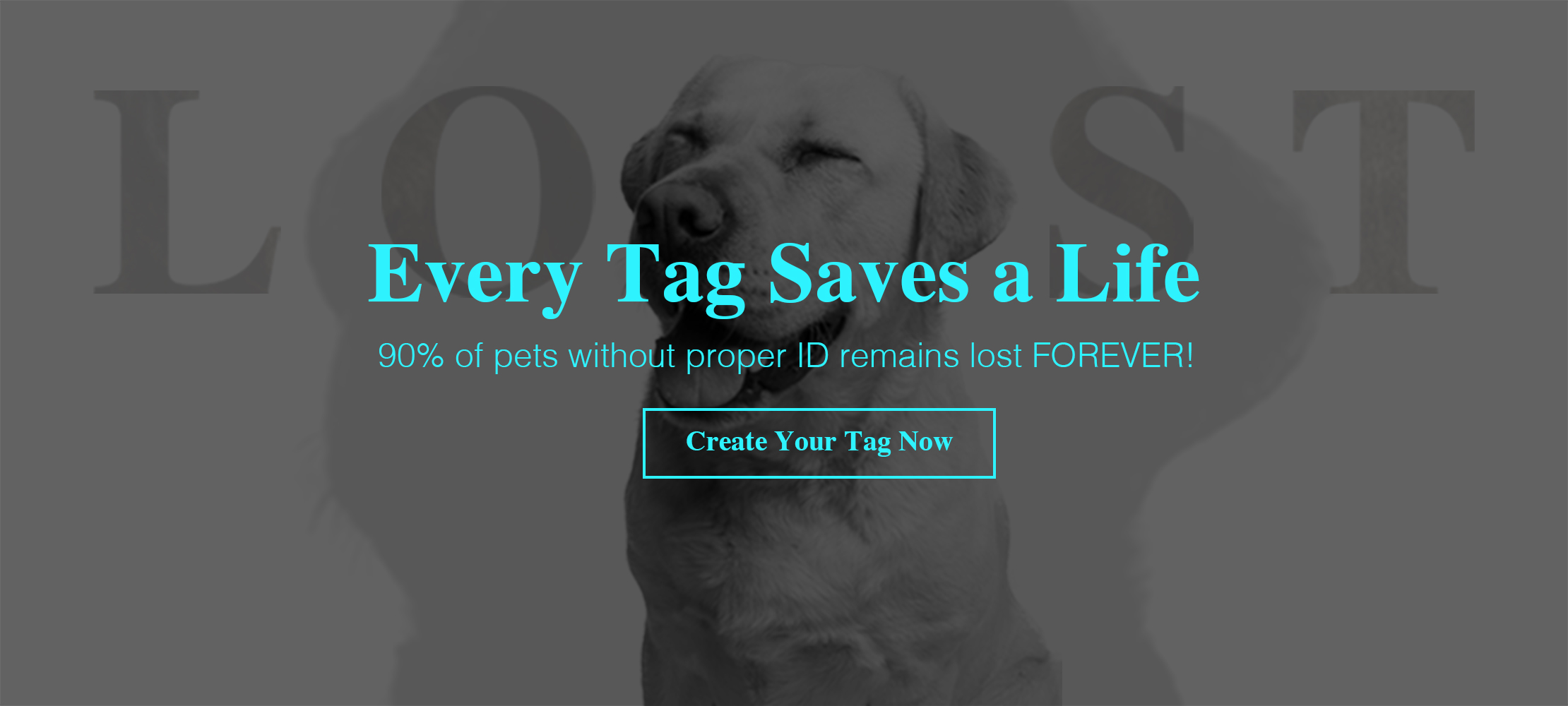 Personalized Dog ID Tag