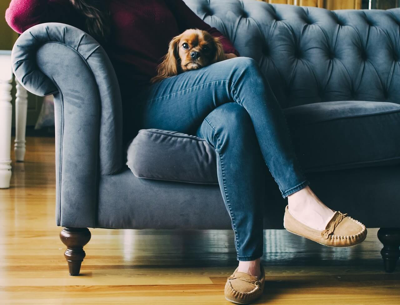 emotional support animal housing laws