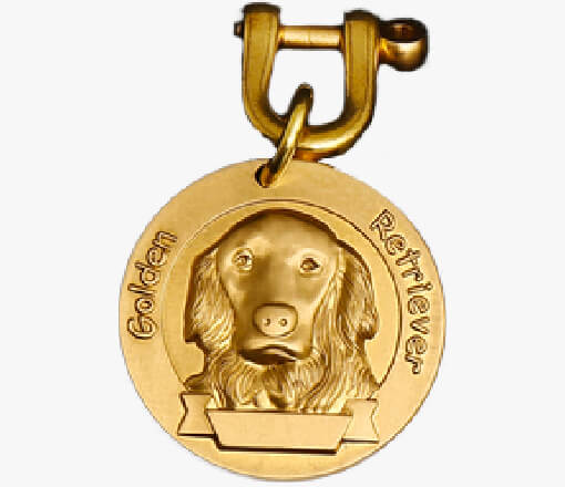 https://www.supportdogcertification.org/product/bronze-dog-id-tags