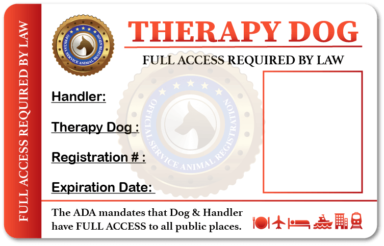 Therapy Dog Identification Card
